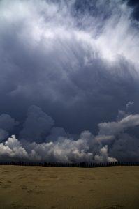 Photgraphie Nature -La nature reprend ses droits