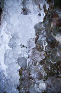 Photographie Nature - Microcosme ice 3/3