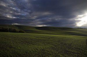 Photographie couleur Nature - Courbe et Lumière