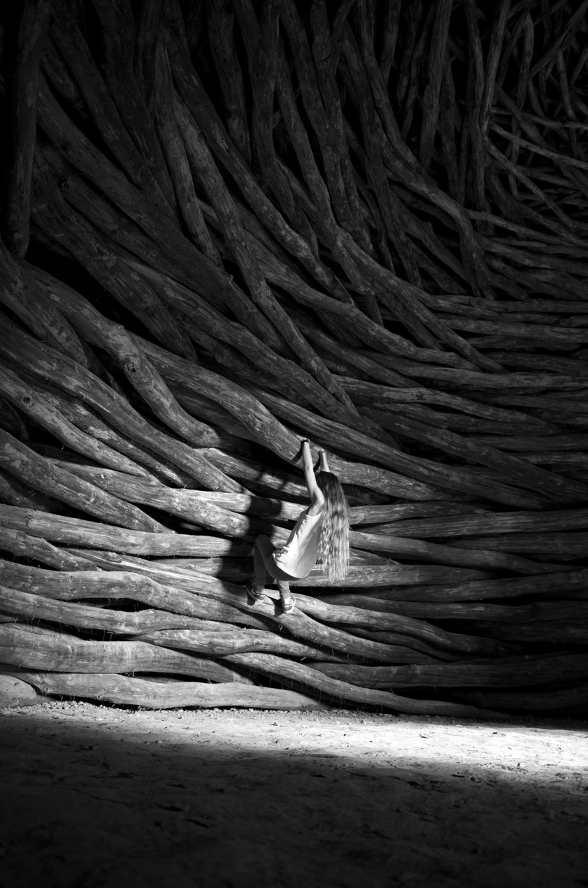photographie-noir-et-blanc-art - Photo