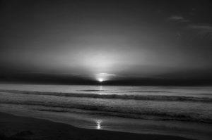 Photographie en noir et blanc, au paysage naturel, douce Lumière du matin