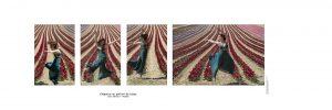 Composition Portrait, intitulé - Elégance au parfum de tulipe