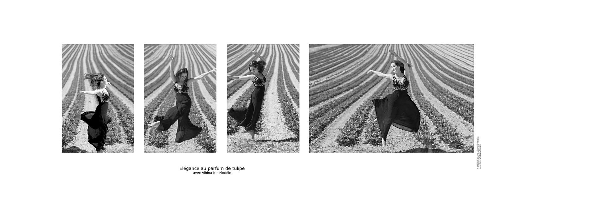 Illustration d'article - Elégance au parfum de tulipe
