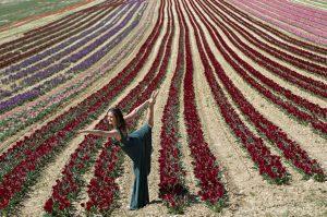 Portrait méditation - Yoga au parfum de tulipe